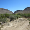 Dog Canyon Trail, Big Bend NP, Texas. In the late 1850's, the US Army imported 33 camels and their handlers from North Africa, and deployed them in Texas to see how they would work out. For awhile they were stationed at Ft Stockton, and they did a caravan down to Big Bend Country and the Dog Canyon. During the Civil War the camels disappeared. Lore has it that the Confederates ate them.