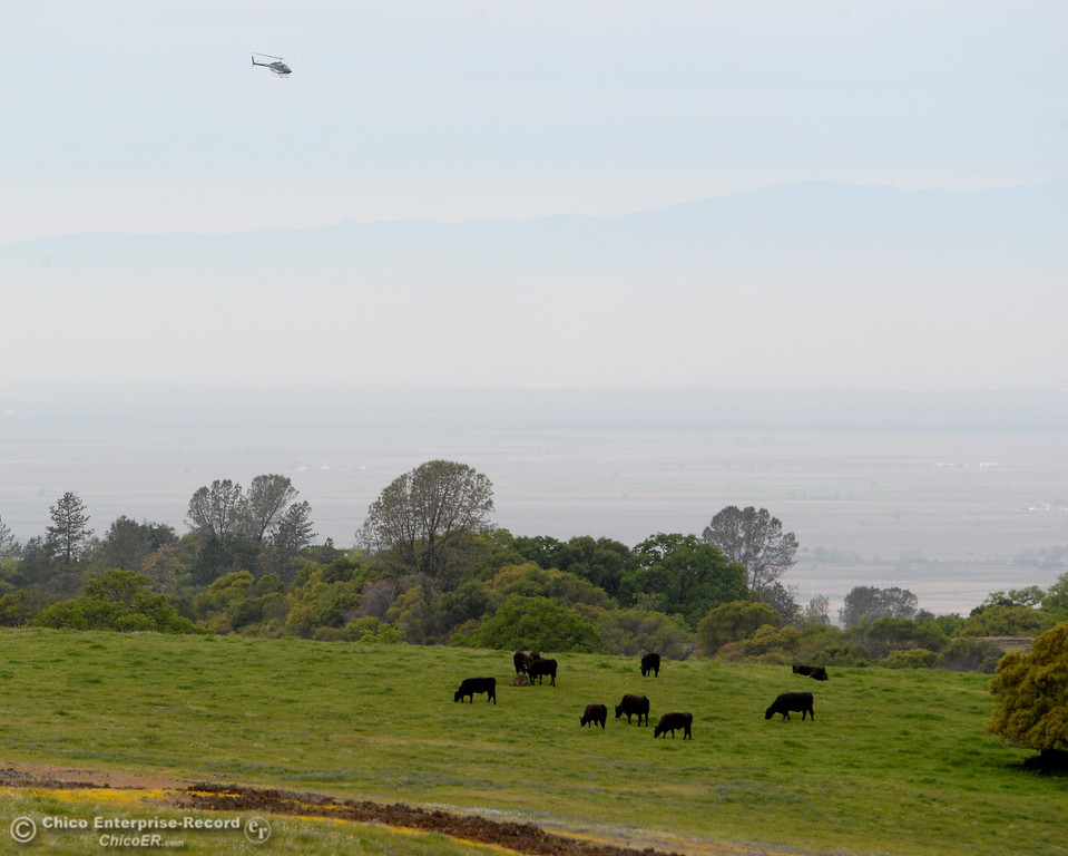 . at Table Mountain in Oroville, Calif. Thursday April 5, 2018.  (Bill Husa -- Enterprise-Record)