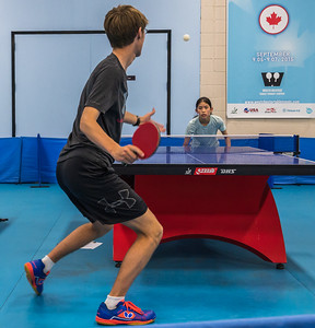Westchester Table Tennis