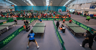 Women's British League, 2014-15, Tipton
