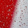 Red & White Raindrops