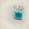 icecube016