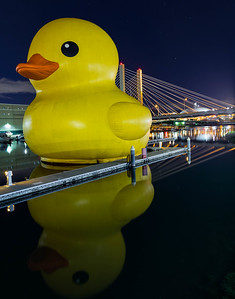 Worlds Largest Rubber Ducky