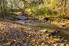 Swan Creek Park 2