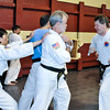 USATMA TKD 2014 Board Breaking-183