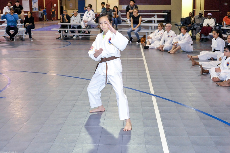 TKD 2018 IOP Tournament-233