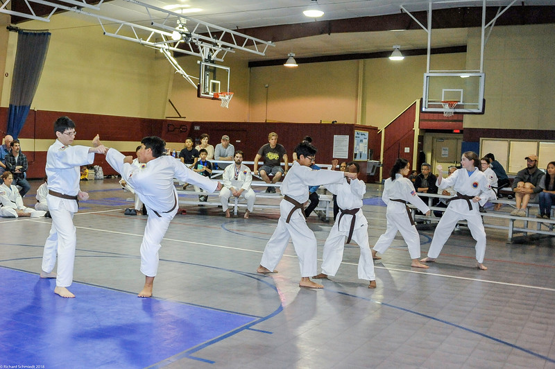 TKD 2018 IOP Tournament-246