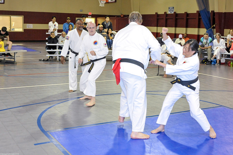TKD 2018 IOP Tournament-194