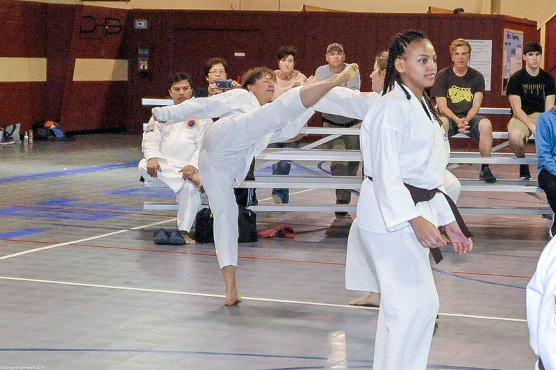 TKD 2018 IOP Tournament-251