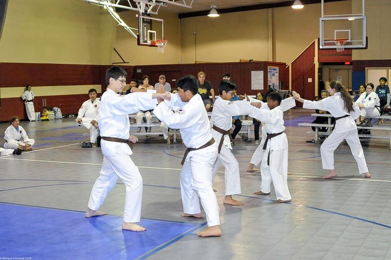 TKD 2018 IOP Tournament-244