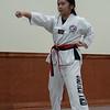 Showing the basic Taekwondo techniques