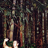 That's how much the bamboo, behind him, grows in a day