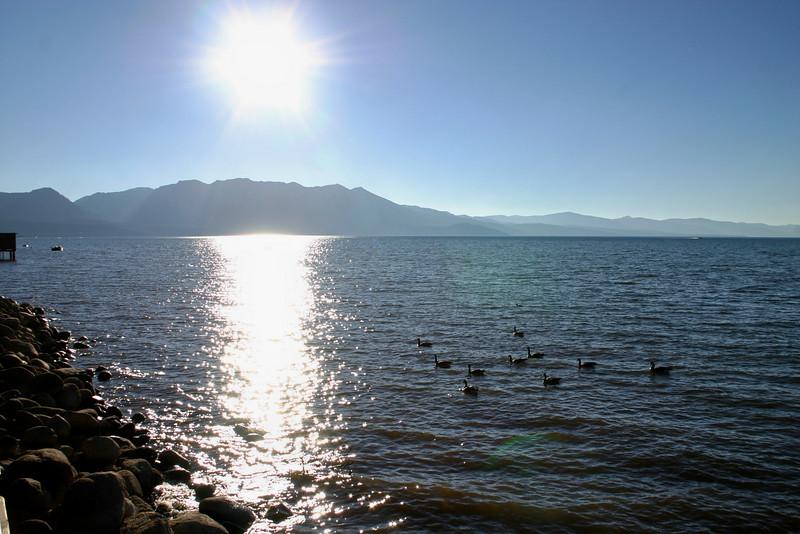 7/28/2008: Regan Beach