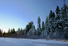 11/21/2009 Truckee River Winter Scene