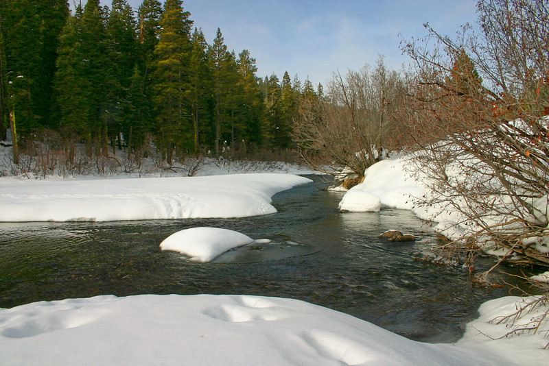 1/5/2009 Truckee River