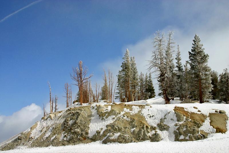 3/15/2009 Mt. Rose Summit