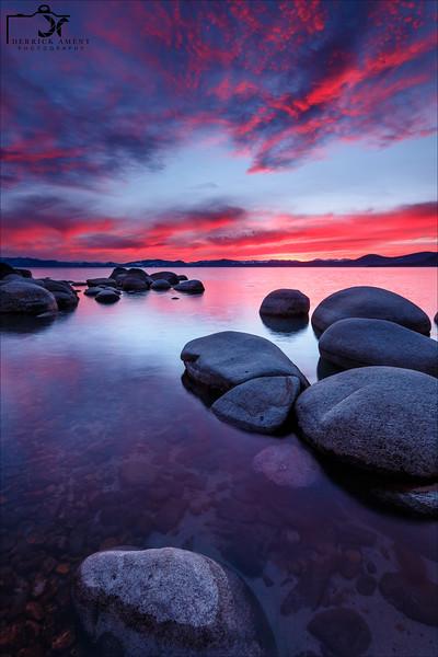 Magenta Sunset 02