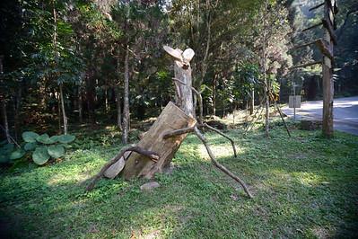 Huisun Forest Reserve
