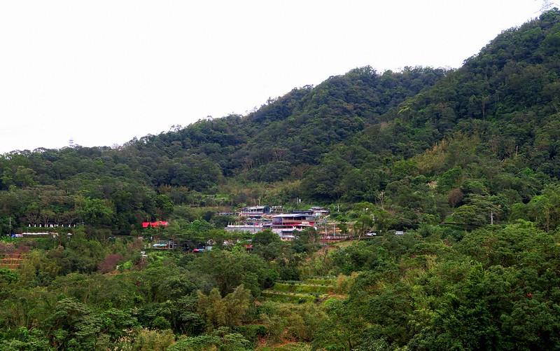 Visiting Maokong for its teahouses.
