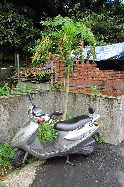 Attila 150cc Scooter in Taiwan