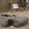 Lanyu0164