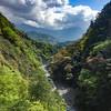Aowanda National Forest 奧萬大
