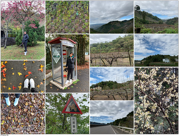 ⛰��, Blue sky ��, ��👟🌸, Green wall, and some Agricultural areas. A sea of clouds ��🌲 💙 So beautiful that I love you (love those Green Jersey barriers too) ทะเลหมอ� สวยจนรั�