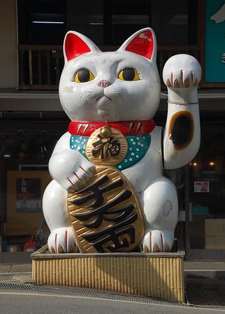 Takayama 2007
