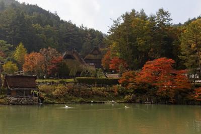 Takayama Fall Foliage, image copyright Kimon Berlin