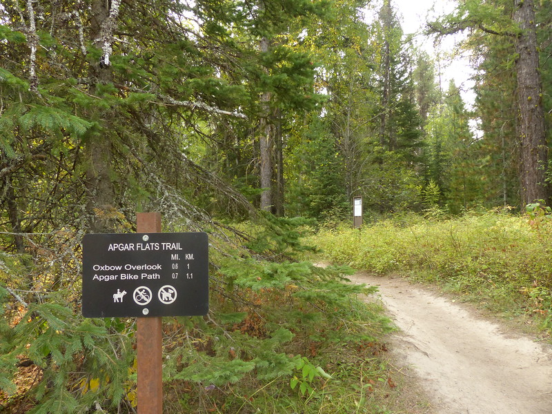 Glacier National Park - Apgar Trail