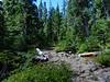 Junction Lake via East Crater - Indian Heaven Wilderness area - Mt. Adams - August 18, 2021