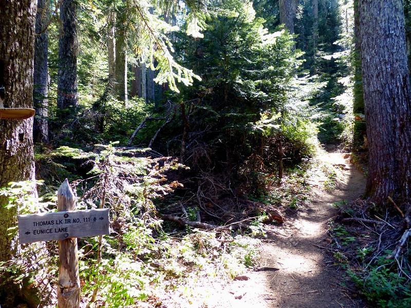 Thomas Lake Trail #111 - Mt. Adams - September 8, 2021