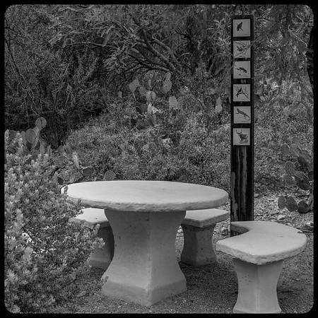 Westward Look Resort, Tucson, Arizona