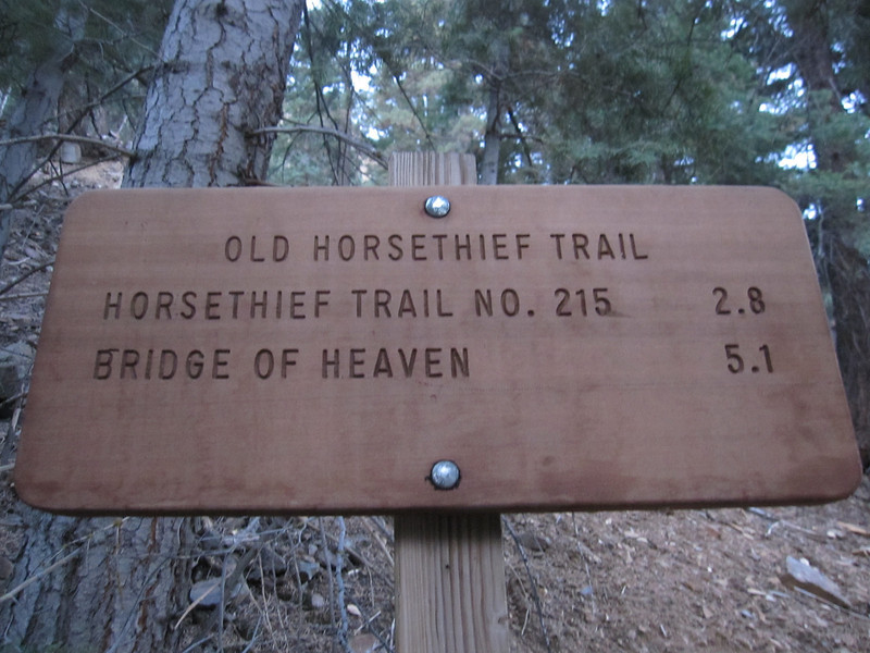Today we explore 1200 vertical feet of the Old Horsethief Trail.  It's a steep climb not unlike most of the Ouray trail systems we've hiked.  The trail head is at 7,700 feet elevation.