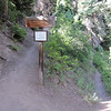 This 3:15 hike took us up 1800 feet in about 3.6 miles one way.  The Placard announces the Chief Ouray Mine trail stem leaving the Portland Trail 238 shown continuing towards the right.  From here the mine area is between 1.7 and 2 miles depending on how far you want to venture in.  The trail is very dangerous in spots.