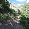 Here's what the trail looks like about 1/4 of the way up.