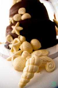 SHELL CAKE (1024 of 26)