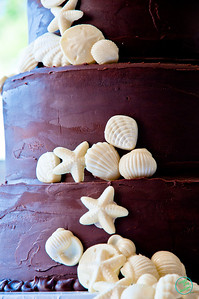 SHELL CAKE (1007 of 26)