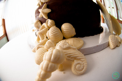 SHELL CAKE (1022 of 26)