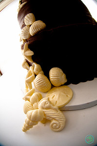 SHELL CAKE (1021 of 26)