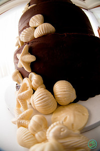 SHELL CAKE (1023 of 26)