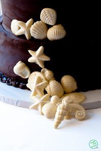 SHELL CAKE (1011 of 26)