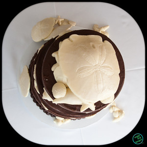 SHELL CAKE (1003 of 26)