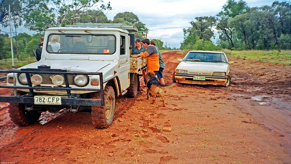 Ford Falcon slipped down into the table drain on our end of Talafa Road. No trouble for Diahatsu with Gripper lug tyres. Mulga Bill dog enjoys the action.
