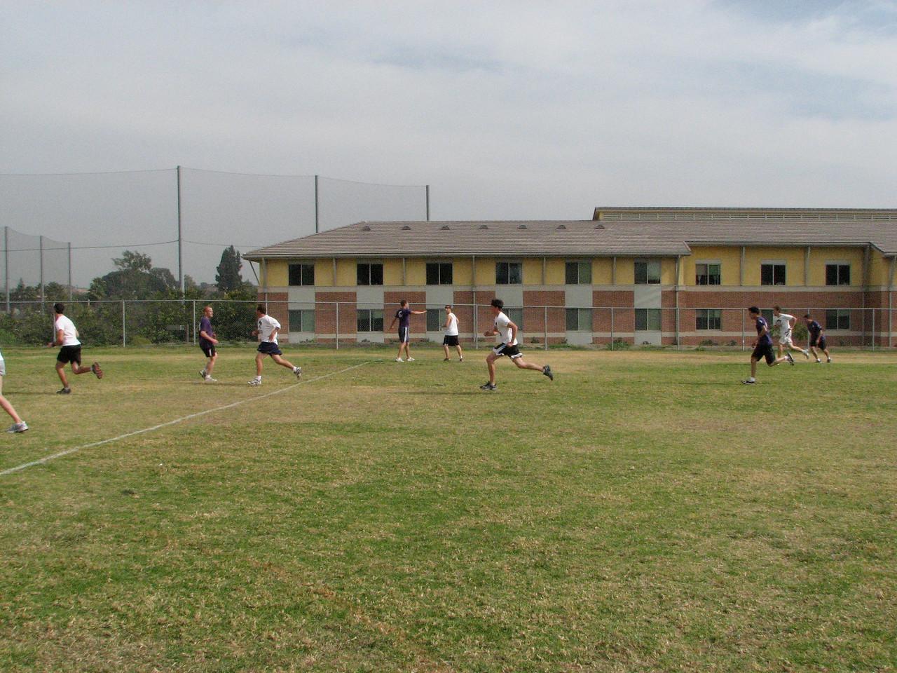 2006 11 03 Fri - Tigers on the retreat