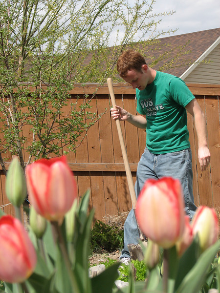 2007 04 09 Mon - Coram Deo's Mormon neighbors' service projects 08 - Josh Jones & tulips