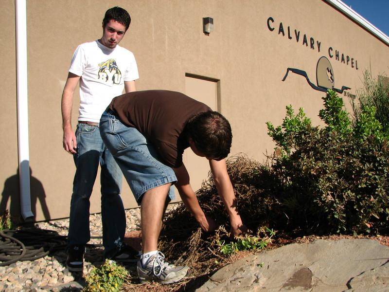 2007 04 07 Sat - John Dunne & Justin Barr pulling dead plants