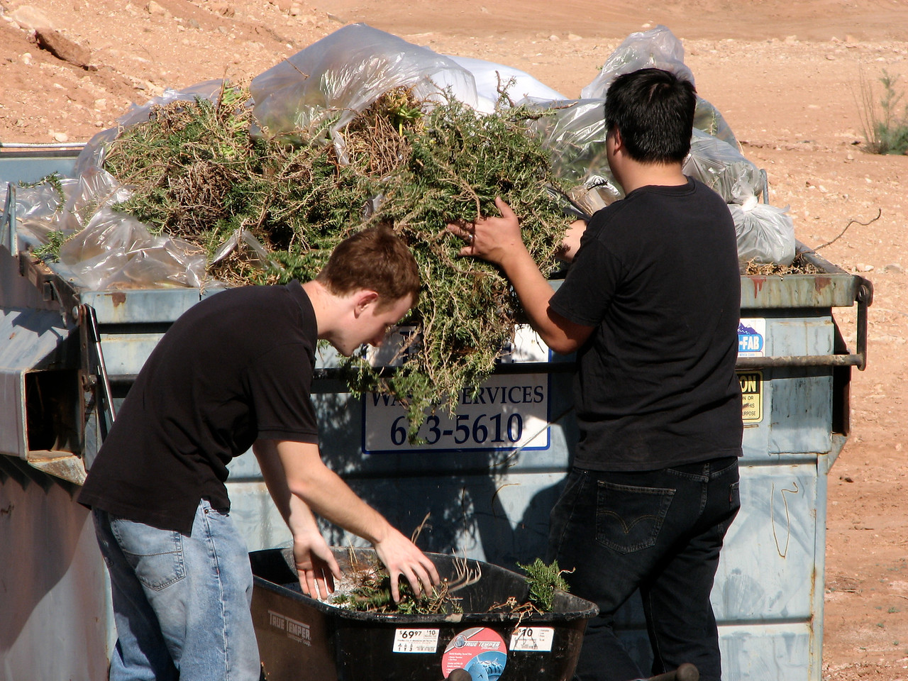 2007 04 07 Sat - Josh Jones & Matt Milton trashing dead shrubs