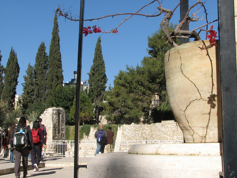 2007 12 29 Sat - Old City walk - Church of St Anne - flower pot & pools of Bethesda