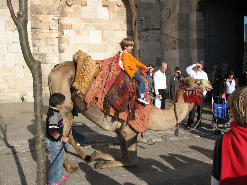 2007 12 29 Sat - Old City walk - tourist camel ride outside Jaffa Gate 2